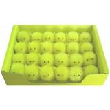 14070 Пиленца в кутия 24бр 6см