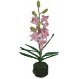 21077.1 Орхидея 45 см