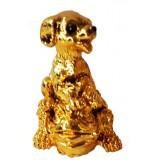 23146.1 Куче с жаба 5.5 см